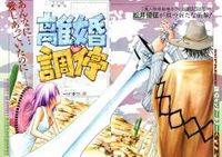 Rikon Choutei manga