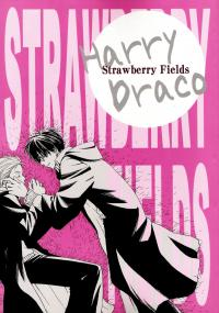 Harry Potter - Strawberry Fields (Doujinshi)