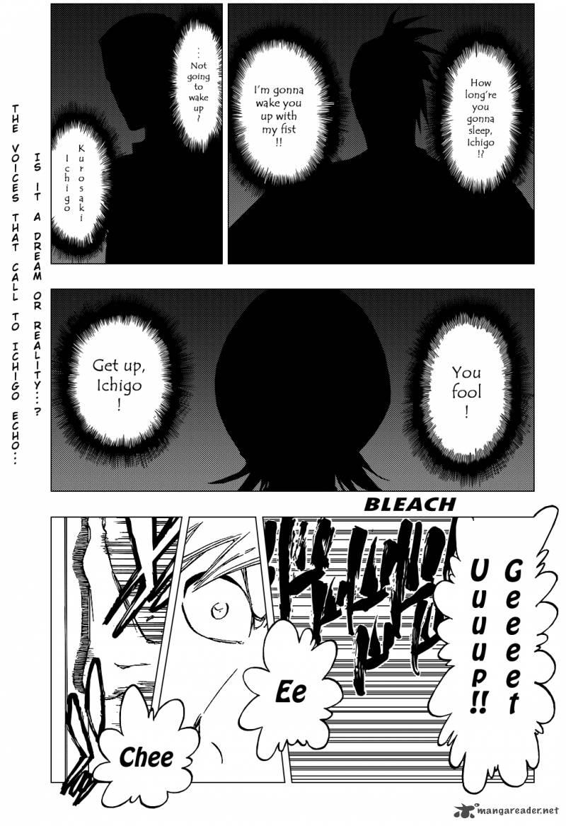 Bleach 425
